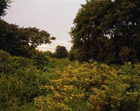 imagen-11